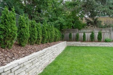 Limestone mortar retaining wall and privacy hedge.