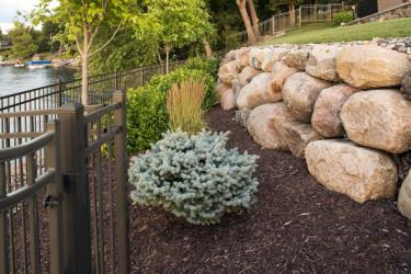 Low maintenance plantings will quickly establish roots and grow into a natural privacy screen.