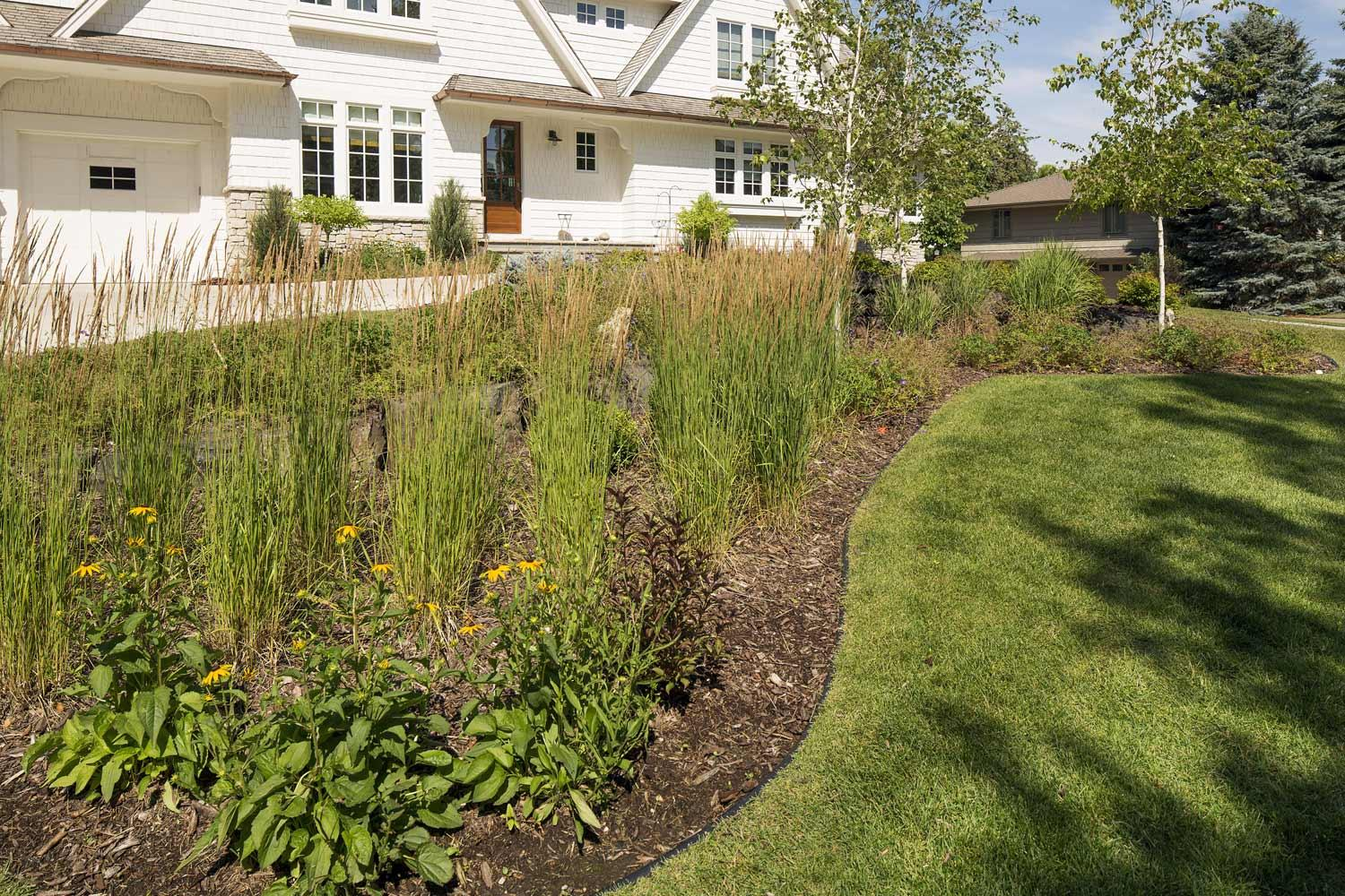 Landscaped garden with curving edges and native grasses in Edina, MN
