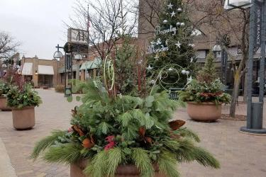 Winter planter pots with evergreen boughs and red dogwood twigs