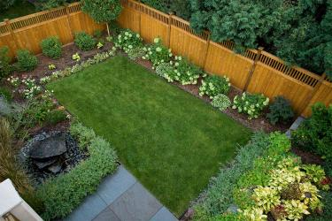 Small modern backyard lawn landscape.