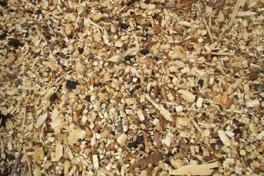 Close up of wood chips.