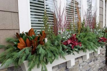 Window box with evergreen christmas decorations