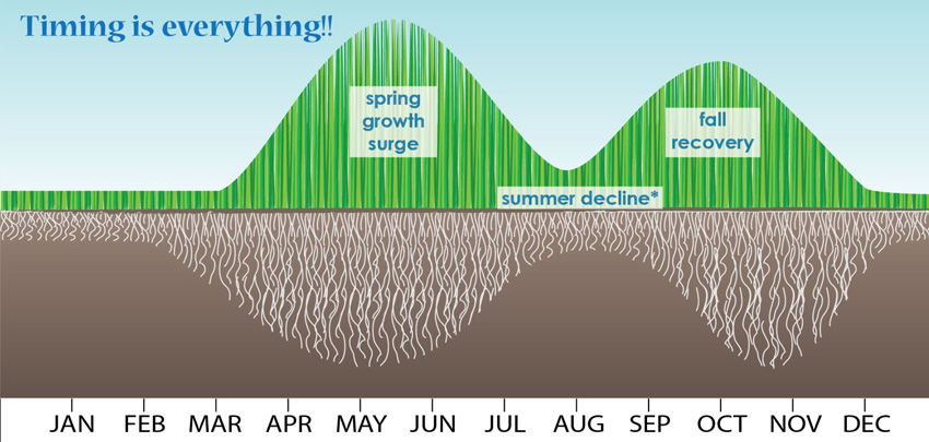 Two mountain diagram of grass growth.