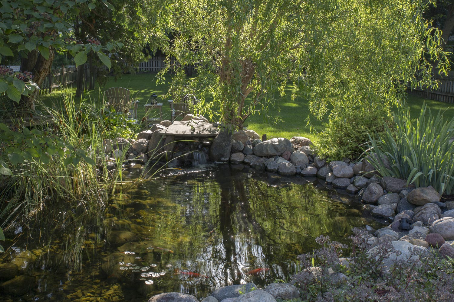 Koi pond landscaping design