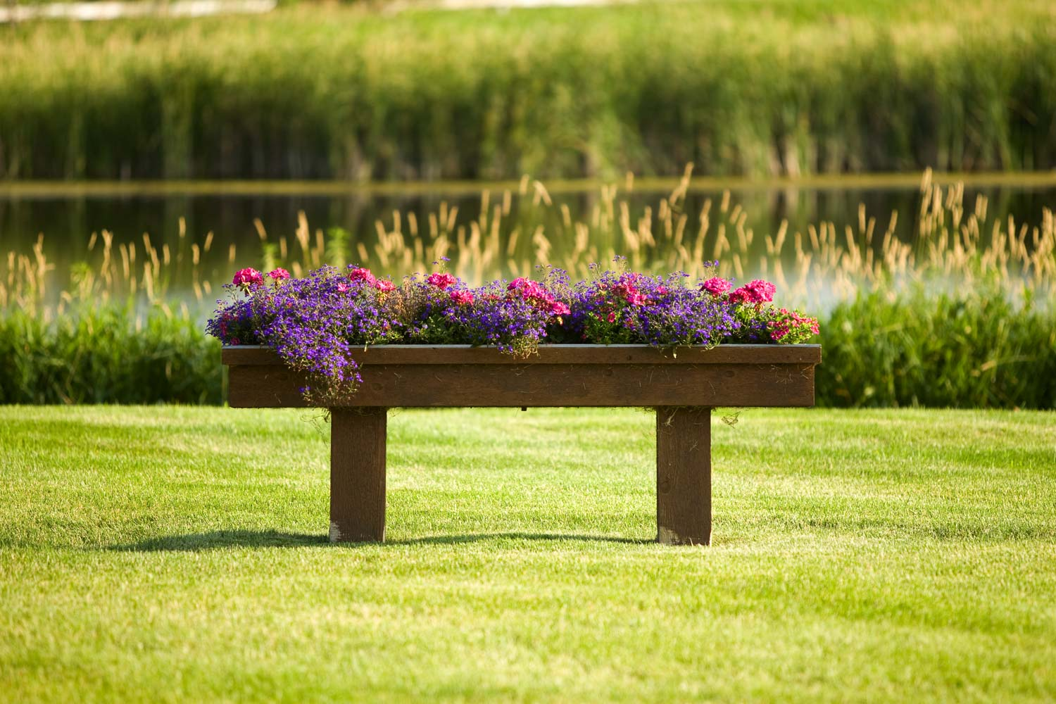 rustic wooden planter bench with purple flowers